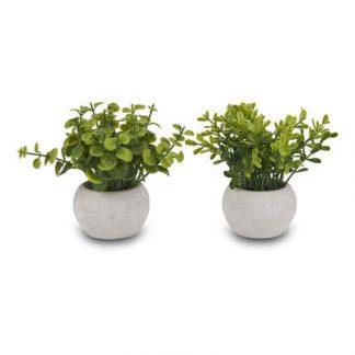373-255123 cveće 12cm